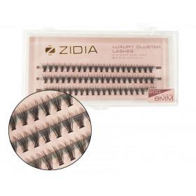 Kira Base Color 008, 6 мл